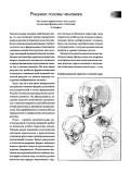 Сенин В., Коваль О. — Школа рисунка карандашом. Натюрморт, портрет, пейзаж - страница