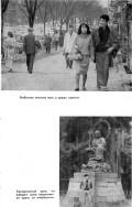 Овчинников В. В. — Ветка сакуры - страница