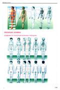 Кузнецов А. Ю. — Атлас анатомии человека для художников - страница