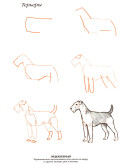 Эймис Л. Дж. — Рисуем 50 собак - страница