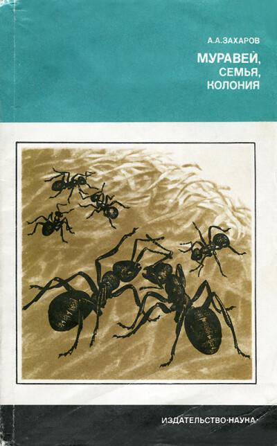 Захаров А. А. — Муравей, семья, колония - обложка