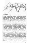 Захаров А. А. — Муравей, семья, колония - страница