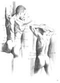 Чиварди Д. — Рисунок. Художественный образ в анатомическом рисовании - страница