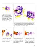 Тейт В. – Рисуем цветы акварелью - страница